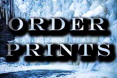 orderprints winter